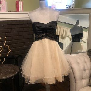 Lace & Tulle Homecoming or Prom Dress